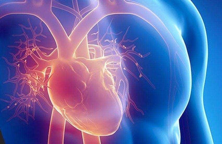 Quais são as doenças cardiovasculares mais comuns